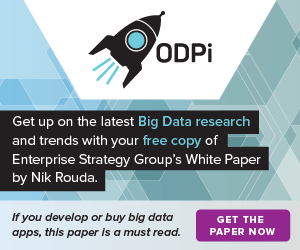 Linux Foundation BigData White Paper site wide