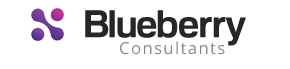 Blueberry Consultants