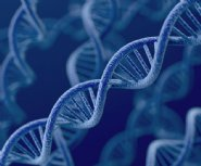 $40-million-genomics-accelerator-introduced-by-Helix-and-Illumina