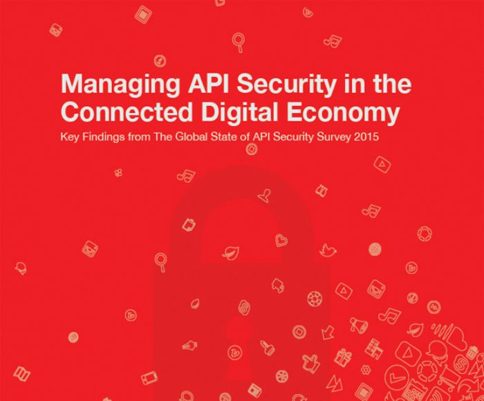 New Study Shows Companies Lacking in API Security Measures