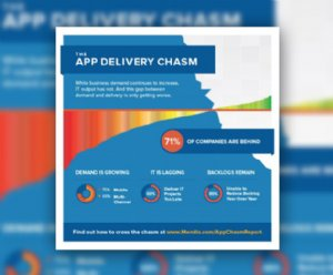 Every CIO Should Cross the App Delivery Chasm in 2015