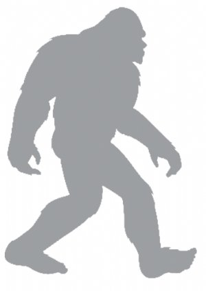 Easier to Do: Find Bigfoot or Develop the Next Million Dollar App