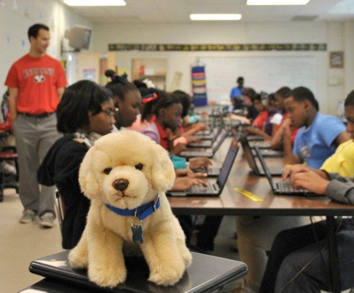 CodeHS announces Code Missouri Schools program   ADM