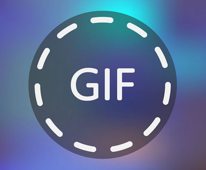 make 1 minute gifs on gfycat now app developer magazine