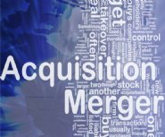 Millennial-Media-Grows-Mobile-Ad-Real-Time-Bidding-(RTB)-Offerings-with-Acquisition-of-Nexage-