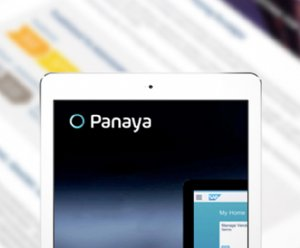 Panaya makes strides in Agile delivery