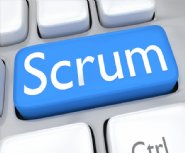 Worrying-Interpretations-of-Scrum