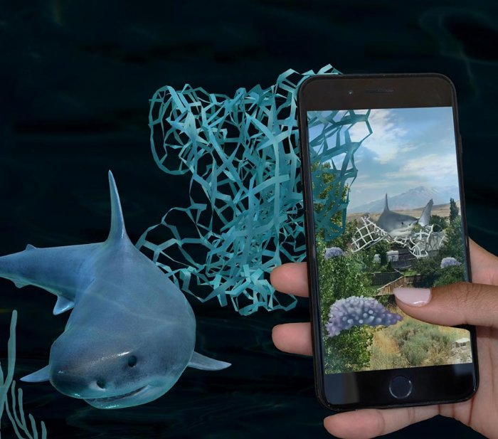New AR shark game is  probably funner than Shark Week was this year