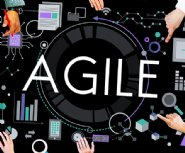 3-things-you-need-to-know-to-make-Agile-software-development-work