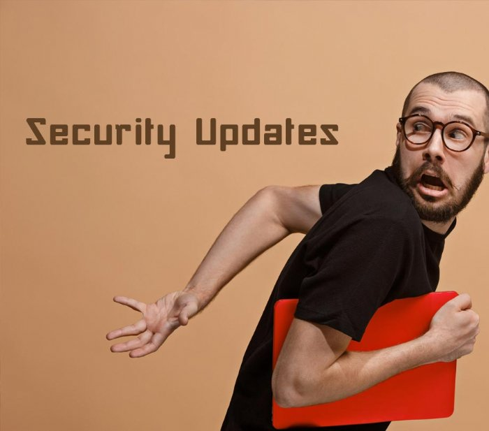 Why developers run away from security updates