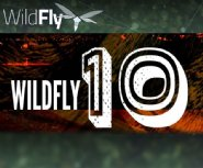 Java-Based-WildFly-10-is-Now-Available