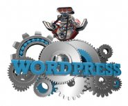 Turbocharging-Drupal-and-WordPress-for-Big-Data-Performance-and-Scale