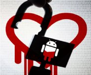 Android-App-Developers-Need-to-Check-Their-Apps-for-Heartbleed-Vulnerability-