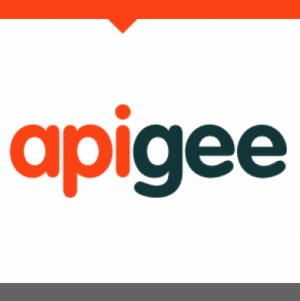 Apigee Announces Monetization Services for APIs and Other Digital Assets