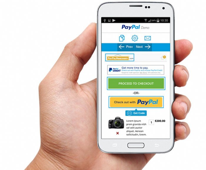 PayPal Demo Tool Allows Developers to Test API's for Checkout Experience