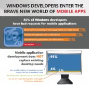Survey-Reports-Windows-Web-Developers-Struggle-with-Mobile-Conversion